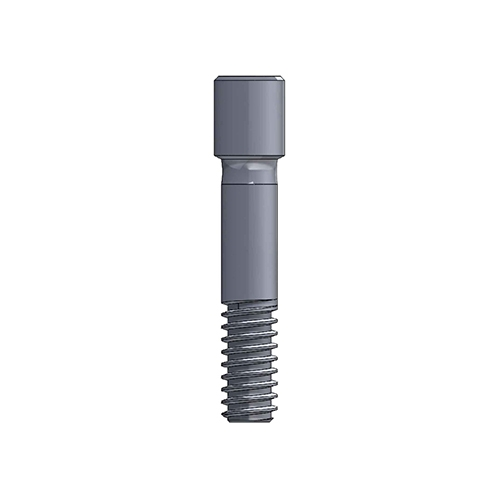 Mini Plus Abutment|Hung Chun Bio-S